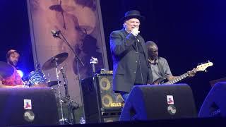 Curtis Salgado @ Holland International Blues Festival, Grolloo NL on 2019-06-14