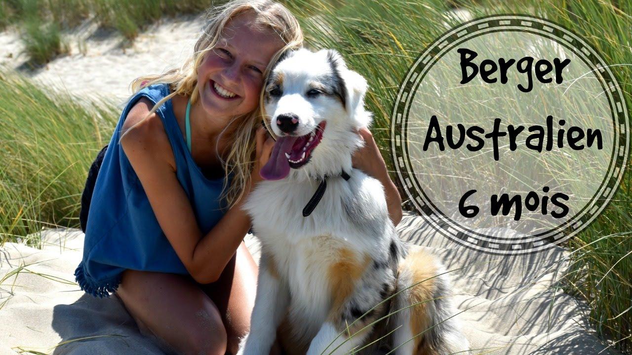 berger australien 6 mois — SummerTime - YouTube