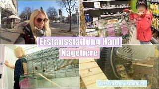 Leona bekommt ein Haustier | Fellnasen Haul & Besuch im Tierheim | Isabeau