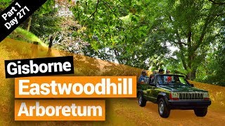Eastwoodhill Arboretum in Gisborne – New Zealand's Biggest Gap Year – Backpacker Guide New Zealand