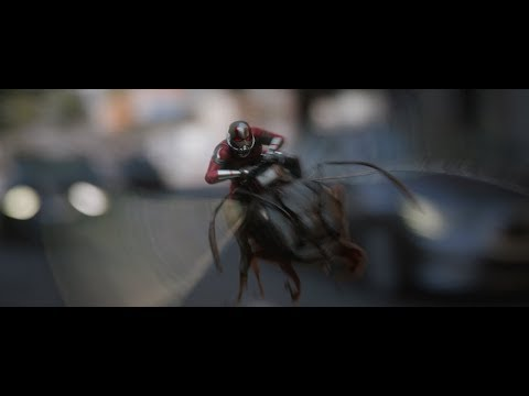Playlist Ant Man & The Wasp
