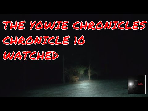 Yowie watches me from the Trees: Bigfoot Australia: The Yowie Chronicles: Chronicle 10: Watched!
