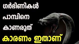 സ്ത്രീകള് കാണേണ്ട വീഡിയോ ഗര്ഭിണികള് സൂക്ഷിക്കുക ? snake marhaba media malayalam islamic speech