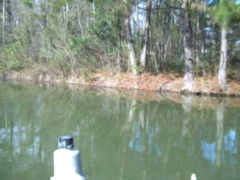 Lake blackshear georgia youtube for Georgia out of state fishing license
