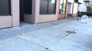 Ella And The Skateboard | K9 Connection Dog Training, Buffalo Ny