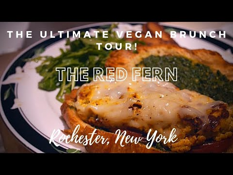 THE ULTIMATE VEGAN BRUNCH TOUR: SZN 2- EP 6 –Rochester, New York - The Red Fern! - Play in 1080