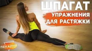 видео упражнения на растяжку