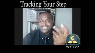 WYTV7 What's Your Story Tracking Your Steps In Life