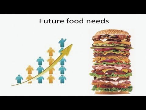 Food Population and Security - Water Climate and Society:  Challenges in a Rapidly Changing World