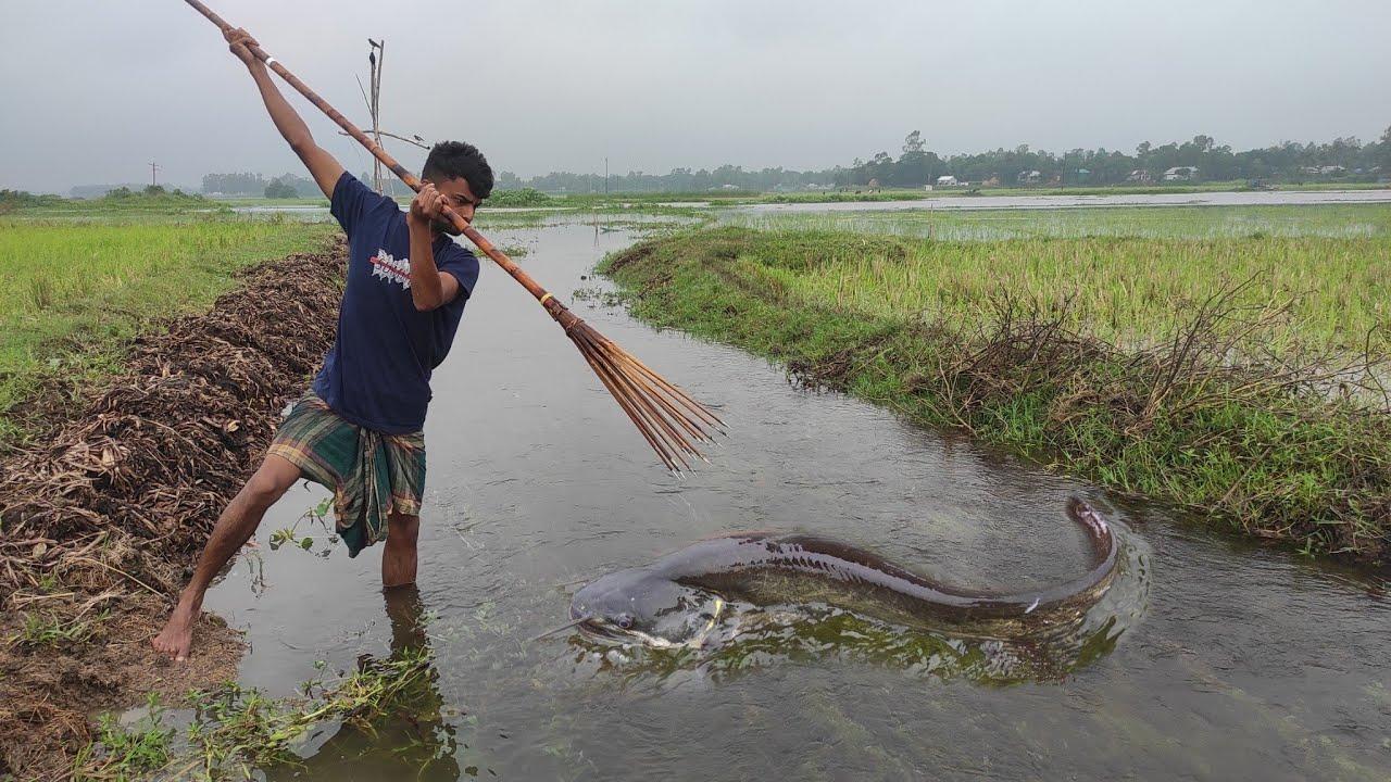 Unbelievable Bamboo Crossbowfishing ❤️ Amazing Boy Catch Big Big Fish From Drean ❤️ Best Fishing