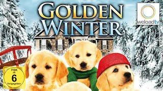 Golden Winter - Wir suchen ein Zuhause [HD] (Weihnachtsfilm | deutsch)