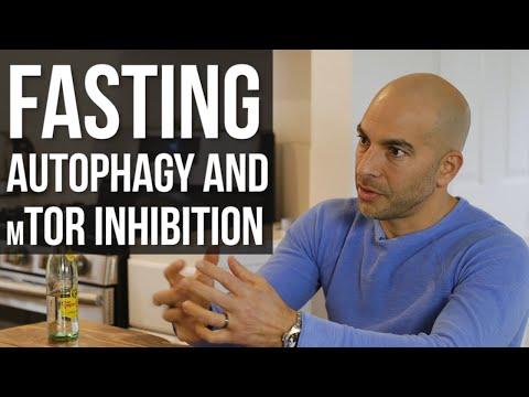 autophagy,-fasting,-&-mtor-inhibitors---peter-attia,-md