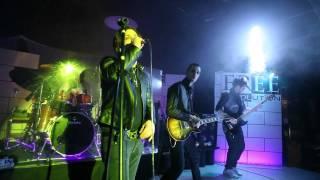 Assenza - L'Amore Muore (Original Live@Free Revolution) Full HD
