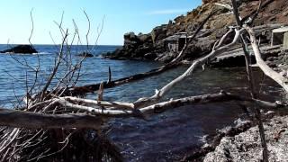 Caló de l'Illa 2