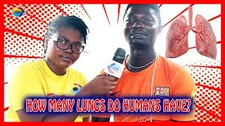 How Many Lungs Do Humans Have? | Street Quiz | Funny Videos | Funny African Videos | African Comedy