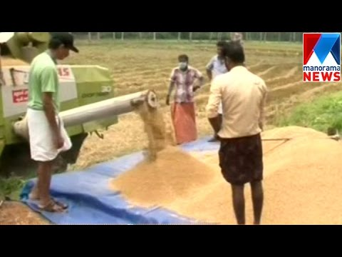 Youth Farmers Made History In  Kottayam| Manorama News