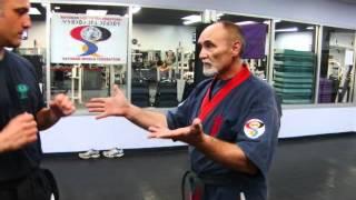 sayokan vs everything else (self defense rochester ny) 2017 Video