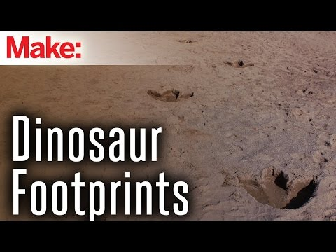 DIY Dinosaur Footprints
