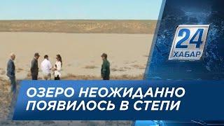 Озеро неожиданно образовалось в степи Атырауской области