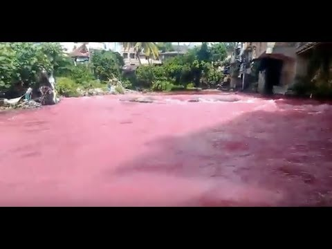 """Breaking News: """"Indonesia River Turns Blood Red"""" Apocalyptic Signs!!"""