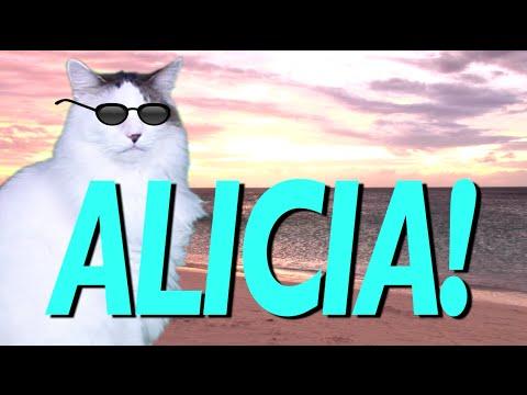 Happy Birthday Alicia Epic Cat Happy Birthday Song