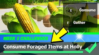 Consume Foraged Items at Holly Hedges & Foraged Items Locations - Fortnite Week 6 Challenges