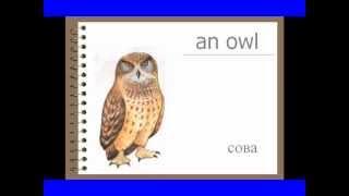 Урок 2. Названия животных.