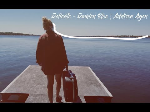 Delicate - Damien Rice | Addison Agen Cover