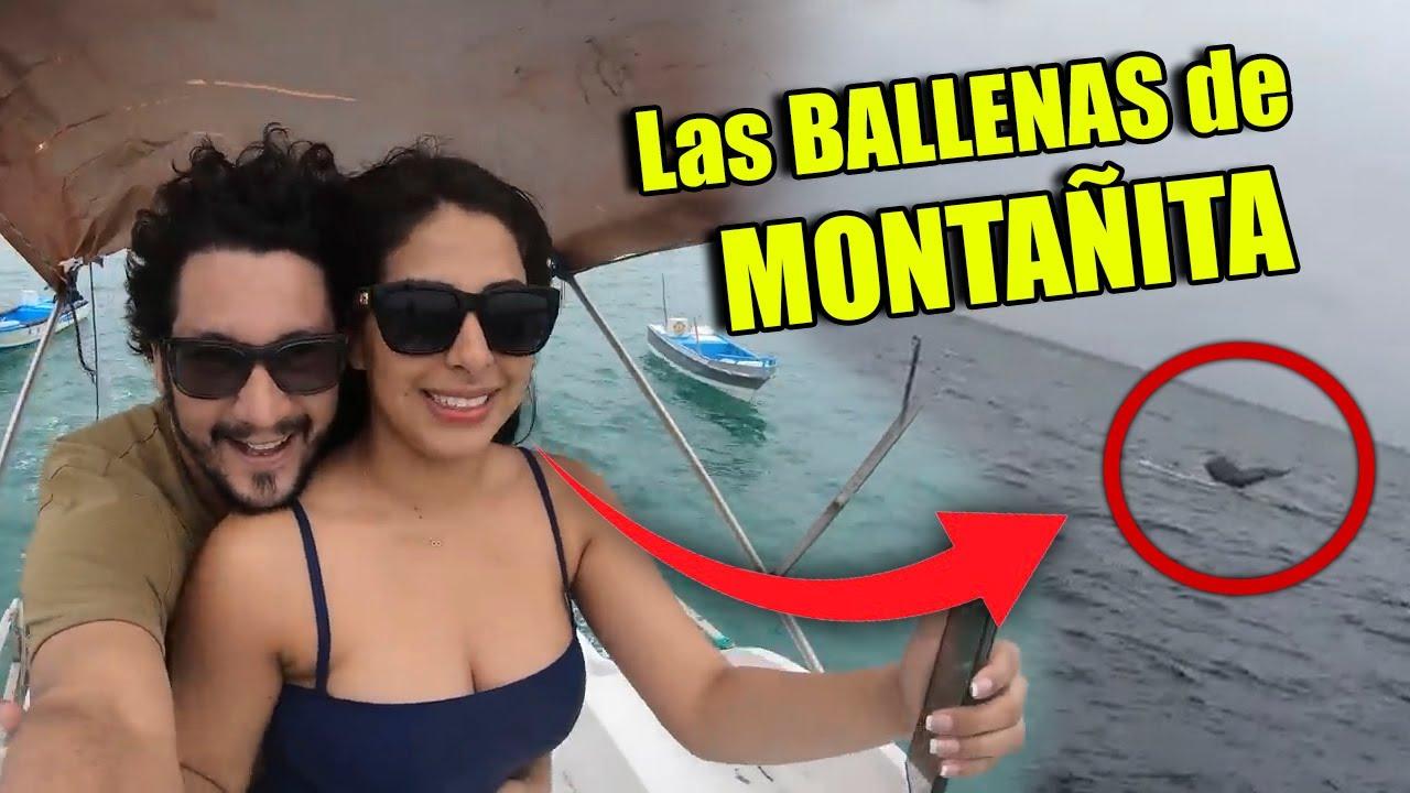 NOS ACERCAMOS A LAS BALLENAS JOROBADAS EN LANCHA ¡GO MONTAÑITA! DE REGRESO CON MI MUJER Y MI SUEGRA
