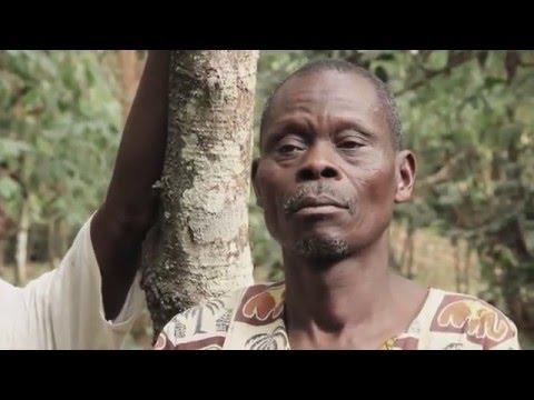 CHOCO TOGO: Du cacao au chocolat togolais
