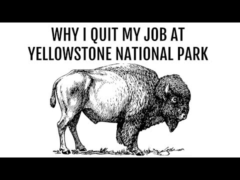 Why I Quit My Job at Yellowstone National Park - My Bad Experience with Seasonal Work