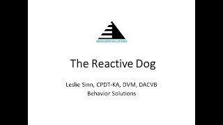 The Reactive Dog  3/16/19 #ThanksToMaddie