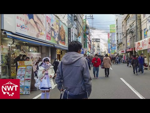 Walking around Namba and Nipponbashi, Osaka - Long Take【大阪・難波/日本橋】 4K