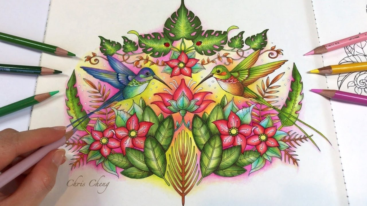 The Hummingbirds Part 2 Real Time Coloring Magical Jungle Coloring Book By Johanna Basford