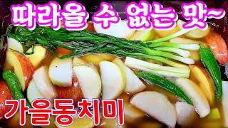 ☆가을동치미☆쉽지만 깊은맛 톡쏘는 시원.아삭아삭 끝판~