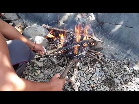 Primitive Technology - Find a big fish  - take to cook eat with mango eating delicious