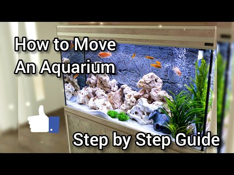 How To Move A FISH TANK Aquarium / Step By Step GUIDE