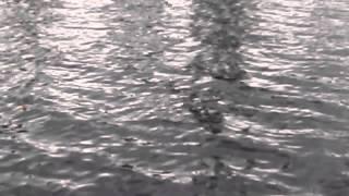 5 рыбалка на ютубе ловля сига и окуня летом на мормышку 100 км по финке оз. Солозеро