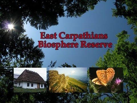 East Carpathians Biosphere Reserve.avi