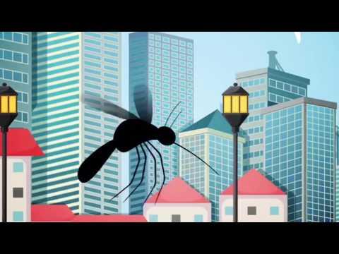A Covid- 19 é uma realidade,  mas a Dengue também é. Dengue mata!!!
