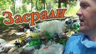 Собираю Папоротник в Лесах Приморья. Сбор Дикоросов в Близи Владивостока.