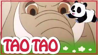 Tao Tao - 36 - הצב האמיץ
