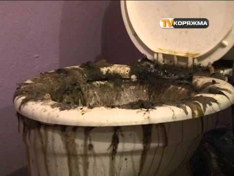 затопило квартиру канализацией