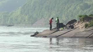 Икра все таки не пропала Мальки растут Рыба будет Рыбалка река Волга пляж Козловка Чувашия лето 2021