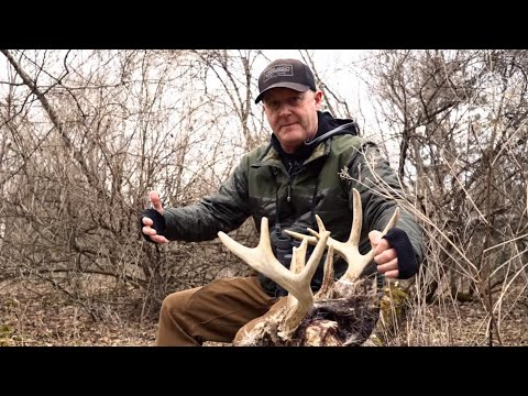 Creating Powerful Buck Travel Patterns On Small Parcels