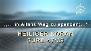 ,,...ihr seid diejenigen, die berufen sind, in Allahs Weg zu spenden;'' (47:39) | Stimme des Kalifen