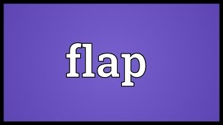 Flap Meaning