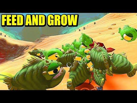 MI HORDA DE BIBOS Vs TIBURÓN - FEED AND GROW: FISH   Gameplay Español