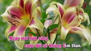 [Karaoke] Nỗi Buồn Mẹ Tôi (Nhạc Chế Phố Núi)