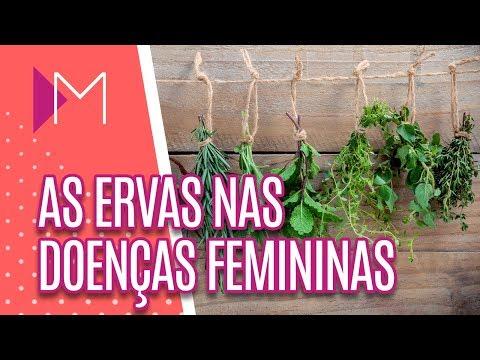 As ervas e os alimentos nas doenças femininas - Mulheres (20/08/18)